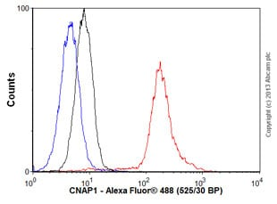 Flow Cytometry - Anti-CNAP1 antibody (ab56885)
