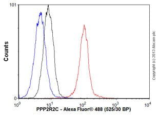 Flow Cytometry - Anti-PPP2R2C antibody (ab58153)