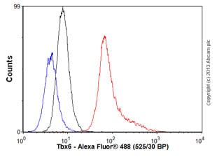 Flow Cytometry - Anti-Tbx6 antibody (ab58255)