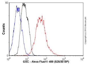 Flow Cytometry - Anti-GSC antibody (ab58352)