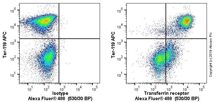 Flow Cytometry - Anti-Transferrin Receptor antibody [OX26] (ab6331)
