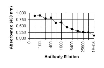 ELISA - Anti-Cytomegalovirus antibody [6F12] (ab6500)