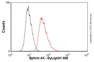 Flow Cytometry - Anti-Ephrin A5 antibody (ab60705)