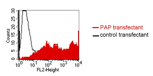 Flow Cytometry - Anti-Prostatic Acid Phosphatase antibody [LT3D1] (ab61707)