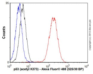 Flow Cytometry - Anti-p53 (acetyl K373) antibody [EP356(2)AY] (ab62376)