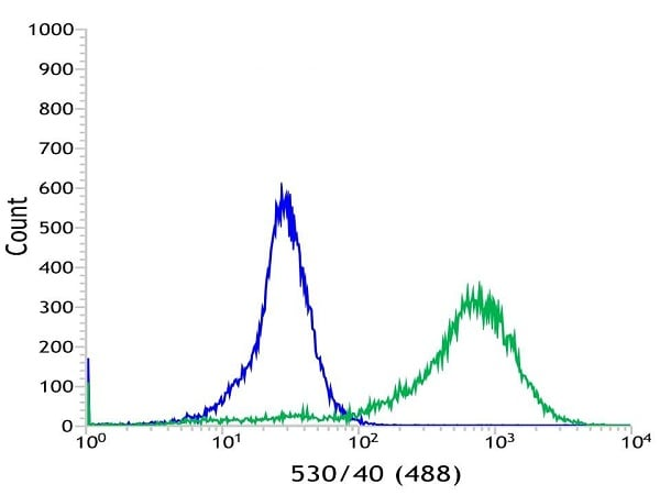 Flow Cytometry - Anti-Cytokeratin 5 [SP27] antibody (ab64081)