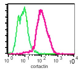 Flow Cytometry - Cortactin antibody [EPR1923Y] (ab68438)