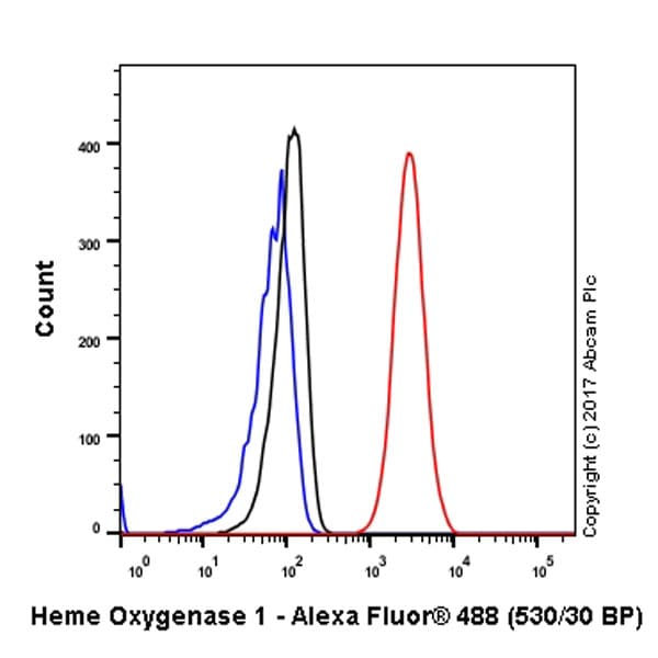 流式细胞术(细胞内)-抗血红素加氧酶1抗体[EPR1390Y](ab68477)