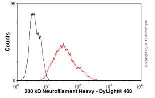 Flow Cytometry - Anti-Neurofilament heavy polypeptide antibody [NF-01] (ab7795)