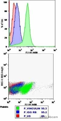 Flow Cytometry - Vinculin antibody (ab73412)