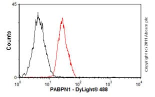 Flow Cytometry - Anti-PABPN1 antibody [EP3000Y] (ab75855)