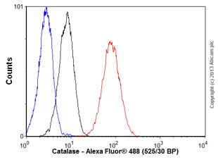 Flow Cytometry - Anti-Catalase antibody [EP1929Y] (ab76024)