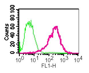 Flow Cytometry - Anti-Retinoic Acid Receptor alpha antibody [EP1823Y] (ab76074)
