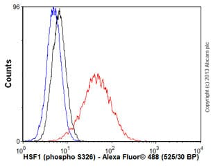 Flow Cytometry - Anti-HSF1 (phospho S326) antibody [EP1713Y] (ab76076)