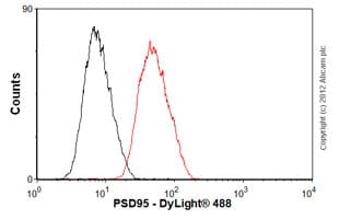 Flow Cytometry - Anti-PSD95 antibody [EP2652Y] (ab76115)