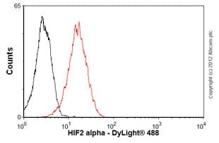 Flow Cytometry - Anti-HIF-2-alpha [ep190b] antibody (ab8365)