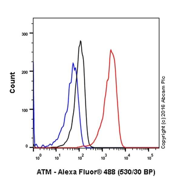 Flow Cytometry -抗ATM(磷-S1981)抗体[EP1890Y](AB81292)