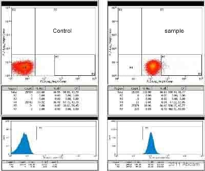 Flow Cytometry - Anti-BMP7 antibody (Biotin) (ab84030)