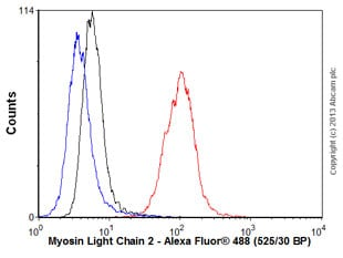 Flow Cytometry - Anti-Myosin Light Chain 2 antibody [AT3B2] (ab89594)