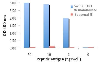 Indirect ELISA - Anti-Swine H1N1 Neuraminidase antibody (ab91643)