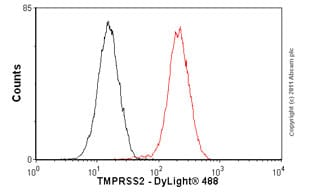 Flow Cytometry - Anti-TMPRSS2 antibody [EPR3861] (ab92323)