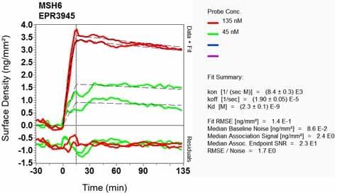 其他-抗MSH6抗体[EPR3945](ab92471)