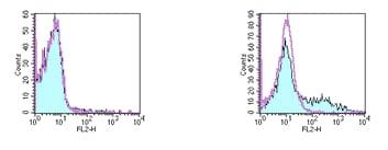 Flow Cytometry - Anti-CD153 antibody [RM153] (Phycoerythrin) (ab95801)