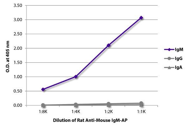 ELISA - Rat monoclonal 1B4B1 Anti-Mouse IgM mu chain (Alkaline Phosphatase) (ab99593)